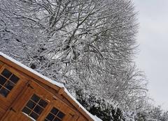 Neige La Bazoge 72650 Chute de neige au Mans