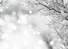 Neige La Ville-aux-Bois-les-Pontavert 02160 Neige en Picardie
