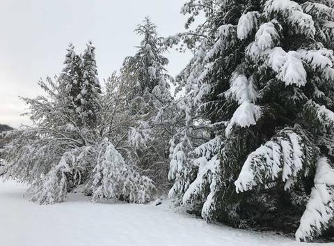 Neige à Urcel