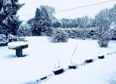Neige Folleville 27230 Jardin sous la neige ??
