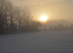 Brouillard Nogent-le-Rotrou 28400 Lever de soleil et brouillard