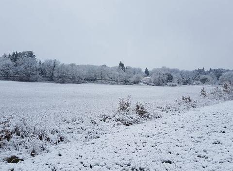 Neige dans le Tarn