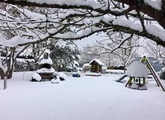 Neige Saint-Hilaire-la-Gravelle 41160 Chute de neige