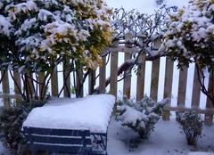 Neige Nogent-le-Bernard 72110 Chutes de neige