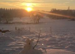 Neige Branscourt 51140 Lever de soleil