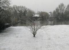 Neige Saint-Aubin-les-Elbeuf 76410 Neige