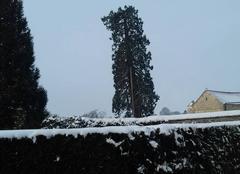 Nuages Thury-en-Valois 60890 Pas encore de neige mais couvert