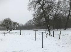 Neige Beaulieu-les-Fontaines 60310 Retour de la neige en Picardie