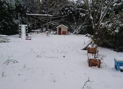 Neige Cande-sur-Beuvron 41120 Candé sur Beuvron 41120