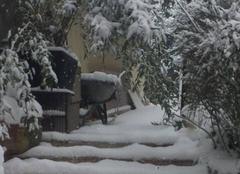 Neige Boissy-le-Sec 91870 Nature sous la neige