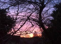 Ciel Emmerin 59320 Lever du soleil avant la neige