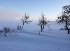 Neige Gohory 28160 Neige au petit matin