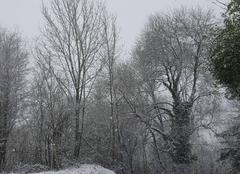 Neige Verneuil-sur-Vienne 87430 Il neige comme prévu