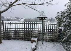 Neige Saint-Yrieix-la-Perche 87500 Jardin sous la neige