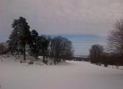 Neige Beaune-sur-Arzon 43500 Une trame verte et bleue dans un manteau blanc