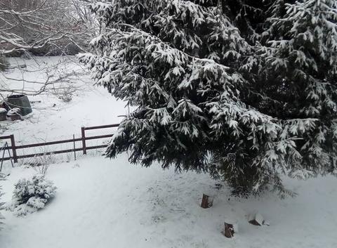 Neige à la Souterraine (23)