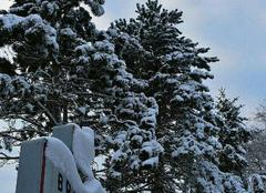 Neige Breuil 51140 Sous la neige