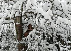 Neige Lagny-le-Sec 60330 Jardin sous la neige