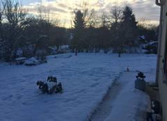 Neige Mons-en-Montois 77520 Jardin