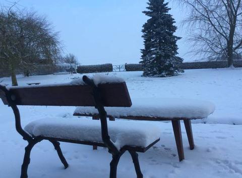 Neige dans les Ardennes