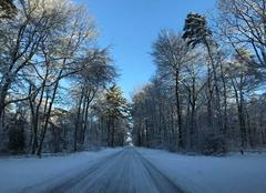 Neige Recloses 77760 Route forestière