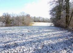 Neige Martiel 12200 Paysage d'hiver oust aveyron ce matin 4 cm de neige