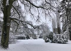 Neige Goupillieres 78770 Goupillières sous la neige