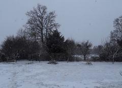 Neige Saint-Arnoult-des-Bois 28190 Joli paysage