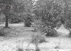 Neige Trelissac 24750 L hiver s accroche