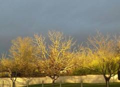 Ciel Septfonds 82240 Ciel d hiver coloré