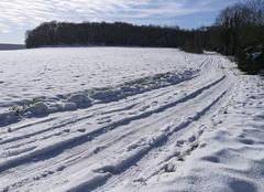 Neige Saint-Yon 91650 Pistes de Ski de Fond en ESSONNE
