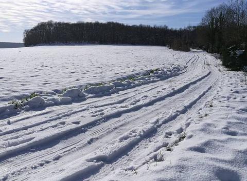 Pistes de Ski de Fond en ESSONNE