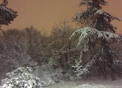 Ciel Paris-16 75016 L'hiver à Paris
