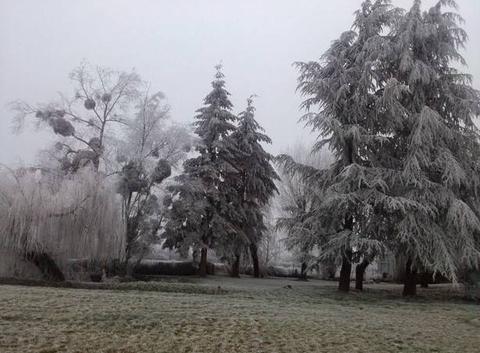 Brouillard givrant et gelée blanche à l'Espace du Grand Clair