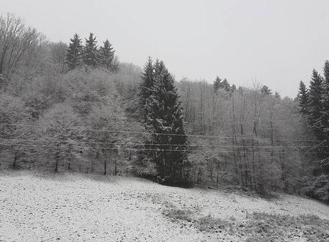Neige à Freland.