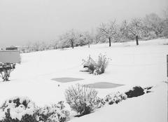 Neige Monswiller 67700 Bonhomme de neige en vue