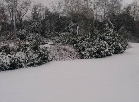 10 cm de neige en Alsace.
