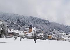 Neige Muhlbach-sur-Munster 68380 Neige