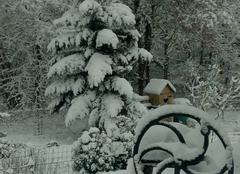 Neige Monteaux 41150 1ere neige