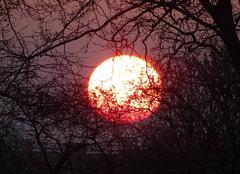 Ciel Nantes 44000 Soleil rouge au lever du jour.