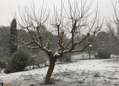 Neige Fuveau 13710 Neige à Fuveau le 21/02/2018