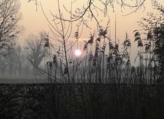 Ciel Erondelle 80580 Lever de soleil