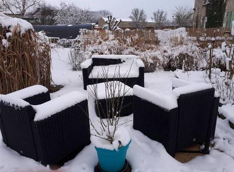 Salon d'été sous la neige!