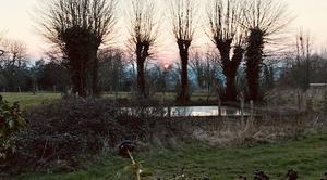 Ciel Aubry-le-Panthou 61120 Coucher de soleil sur le bocage normand
