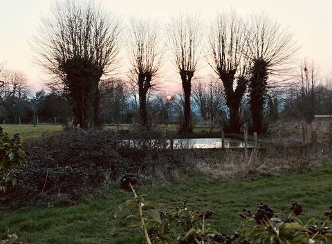 Coucher de soleil sur le bocage normand