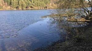 Ciel Soligny-la-Trappe 61380 La surface de l?étang de Chaumont en partie gelée