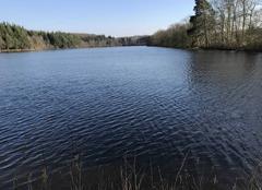 Ciel Soligny-la-Trappe 61380 L'étang de Chaumont