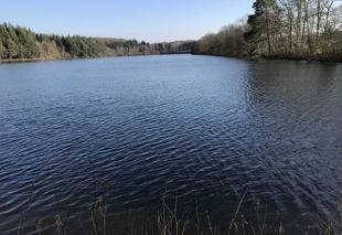 Ciel Soligny-la-Trappe 61380 L?étang de Chaumont
