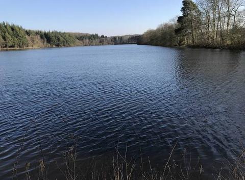 L?étang de Chaumont