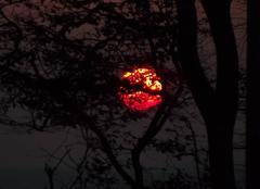 Ciel Bonnemaison 14260 Lever de soleil et pollution